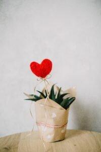Chocolate Massage for Valentine's Day